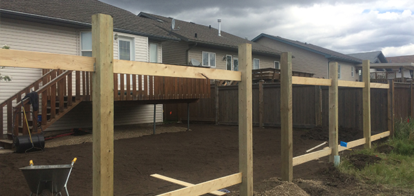 Sod, decks & fences